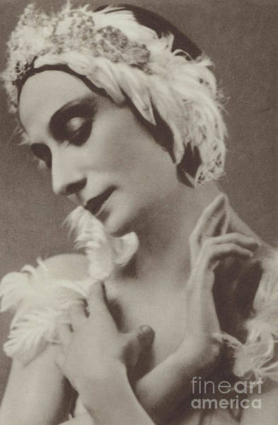 Down Feather Photograph - Pavlova In The Dying Swan by American School