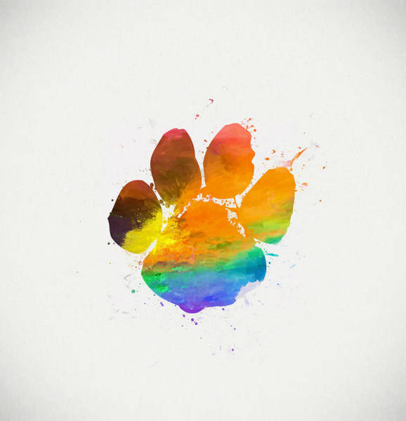 Wall Art - Painting - Paw Print Color by Dan Sproul