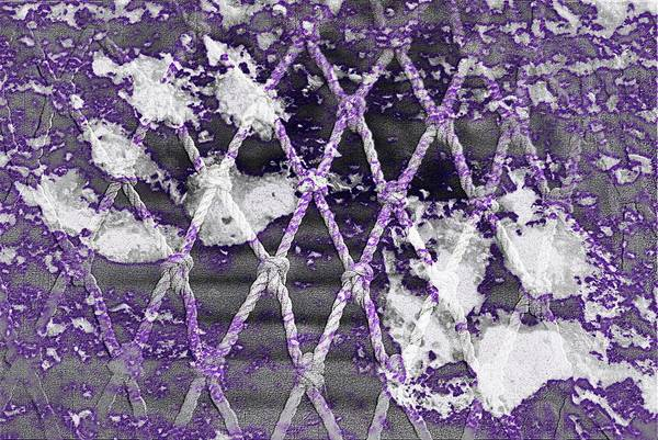 Photograph - Paw Prints Lilac Rope by Dorothy Berry-Lound