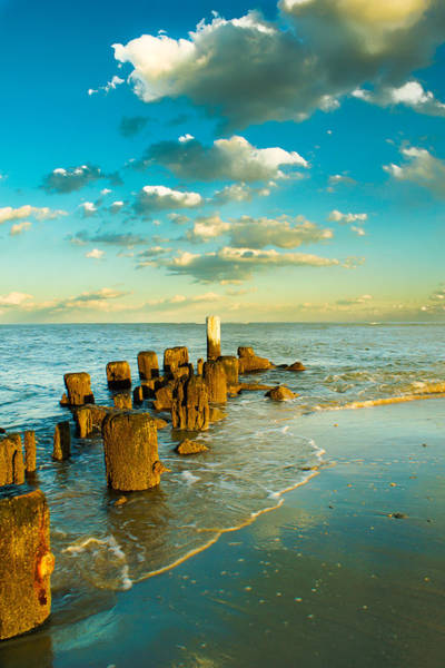 Wall Art - Photograph - Pawleys Island by Matthew Trudeau