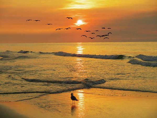 Pawleys Island Sunrise Art Print