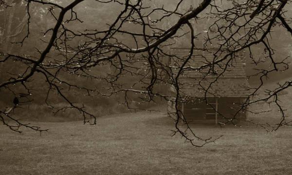 Photograph - Paw's Cabin 2 by Joye Ardyn Durham