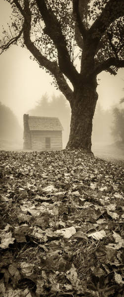 Photograph - Paw's Cabin - Pano-sepia by Joye Ardyn Durham