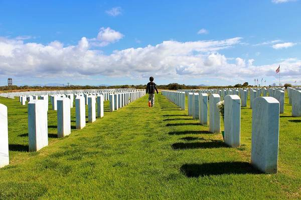 Photograph - Paying Respects by Alison Frank