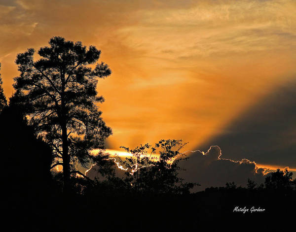Photograph - Payson Sunset by Matalyn Gardner