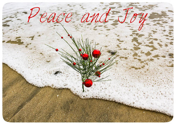 Photograph - Peace And Joy by Alison Frank