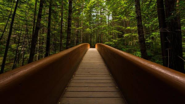 Wall Art - Photograph - Peace Bridge by Dustin  LeFevre