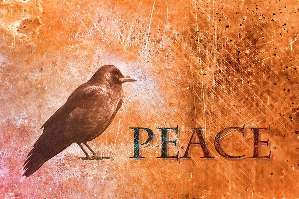 Peace Greeting Card Art Print