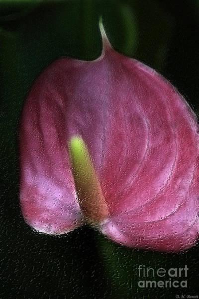 Photograph - Peace-lilly-pink by Deborah Benoit