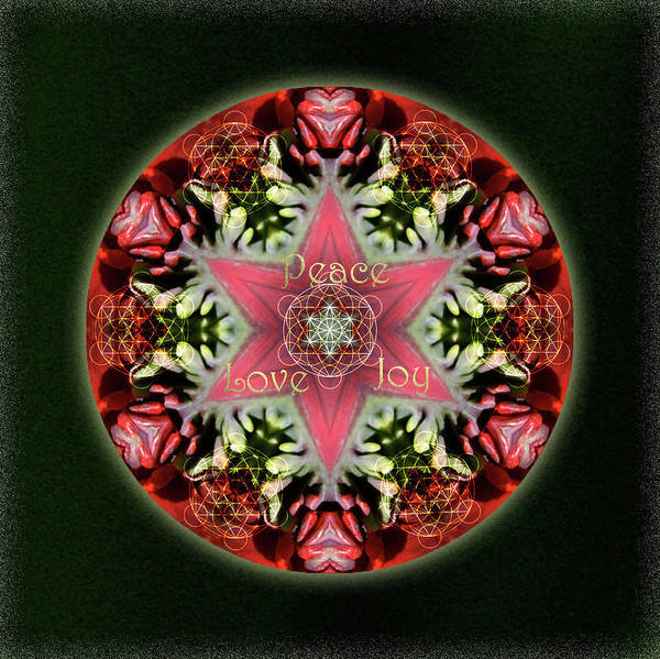 Digital Art - Peace Love Joy Holiday Star by Alicia Kent