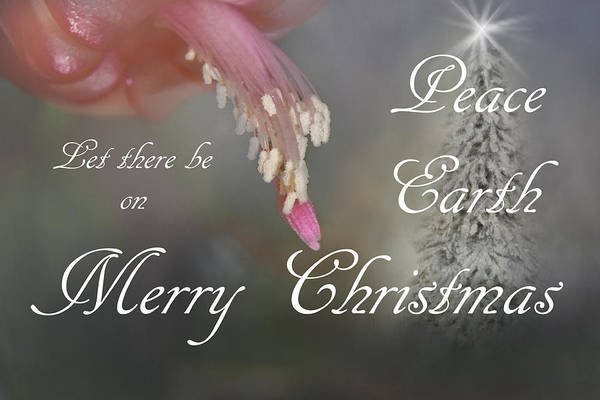 Photograph - Peace On Earth by Judy Hall-Folde