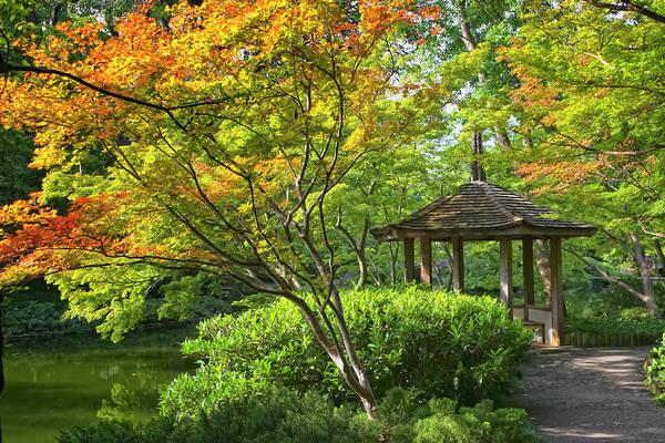 Photograph - Peaceful Autumn by Joan Carroll