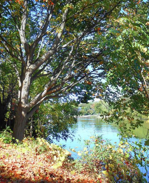 Frankenmuth Photograph - Peaceful Autumn Lake  by Irina Sztukowski