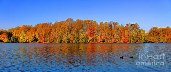 Late Autumn Wall Art - Photograph - Peaceful Autumn by Olivier Le Queinec