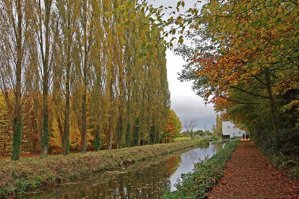 Photograph - Peaceful Autumn Stroll by Gill Billington