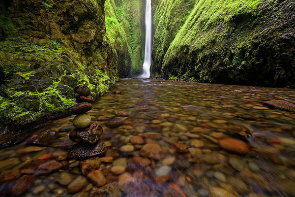 Photograph - Peaceful Balance by Jonathan Davison