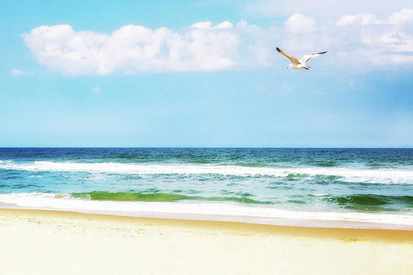 Wall Art - Photograph - Peaceful Beach With Seagull Soaring by Susan Schmitz