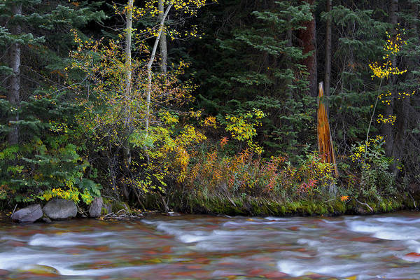 Wall Art - Photograph - Peaceful Colorful Waters by Tim Reaves