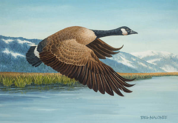 Painting - Peaceful Flight by Del Malonee
