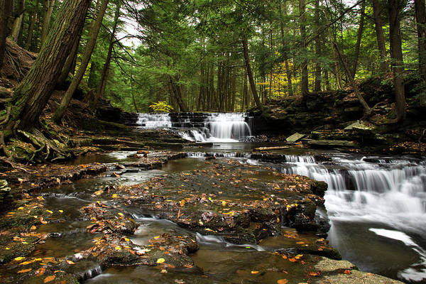 Photograph - Peaceful Flowing Falls by Christina Rollo