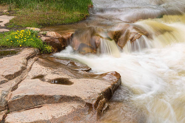 Photograph - Peaceful Lefthand Rocky Mountain Stream  by James BO Insogna