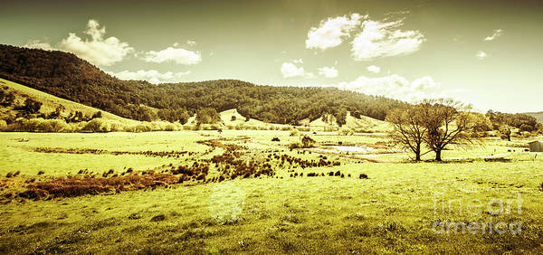 Grassland Photograph - Peaceful Panoramic Pasture by Jorgo Photography - Wall Art Gallery