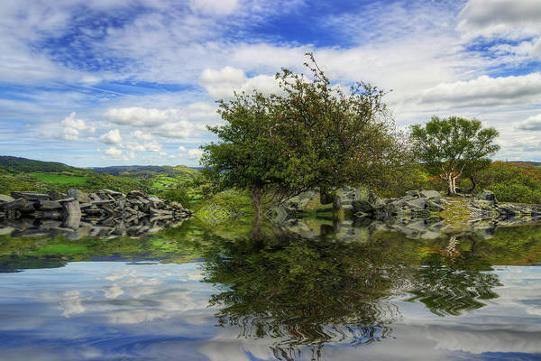 Photograph - Peaceful Reflection Of Life by Ian Mitchell