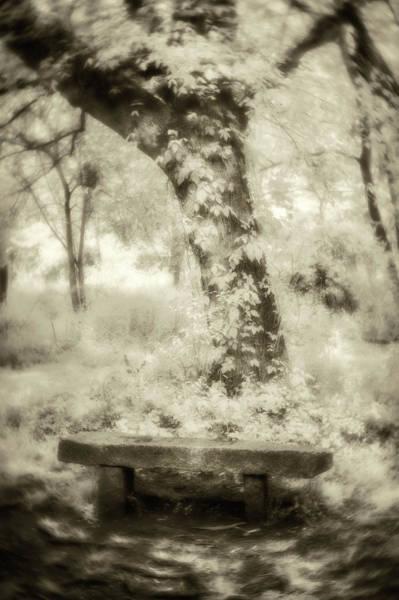 Photograph - Peaceful Rest-sepia by Joye Ardyn Durham