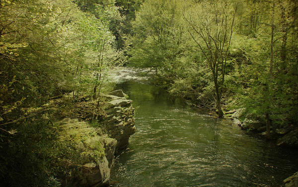 Photograph - Peaceful River by Sandy Keeton