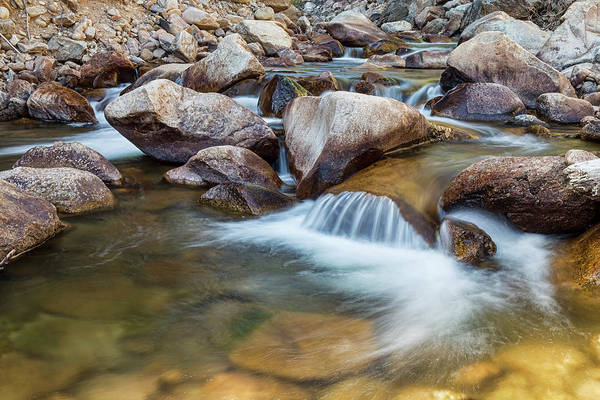 Photograph - Peaceful Stream by James BO Insogna