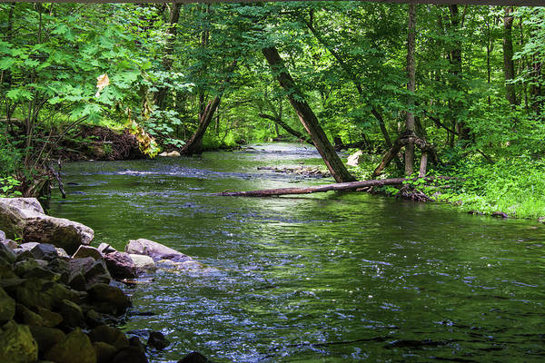 Photograph - Peaceful Stream by Robert McKay Jones