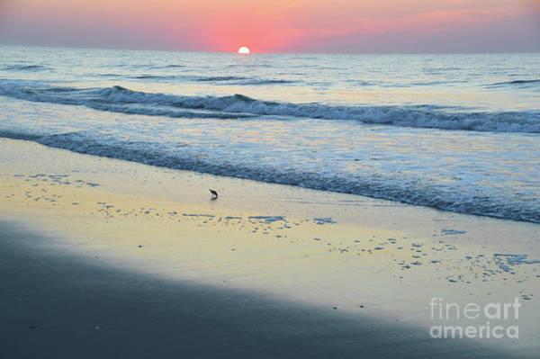 Photograph - Peaceful Sunrise - Sea Isle N.j. by Robyn King