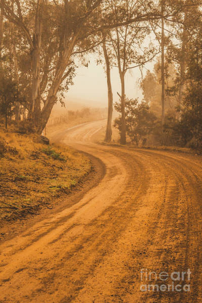 Orange Wood Photograph - Peaceful Tasmania Country Road by Jorgo Photography - Wall Art Gallery
