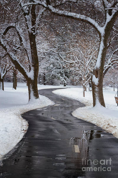 Photograph - Peaceful Winter Path by Kari Yearous