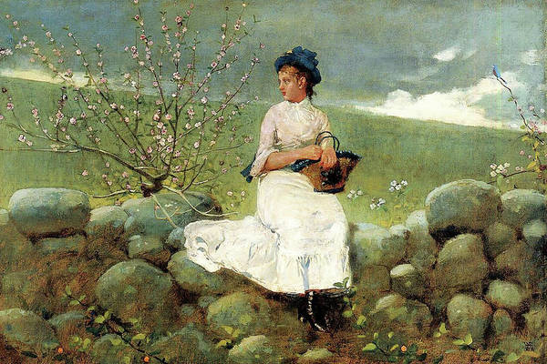 Painting - Peach Blossoms By Winslow Homer 1878 by Movie Poster Prints
