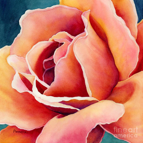 Peach Flower Wall Art - Painting - Peach Rose by Hailey E Herrera