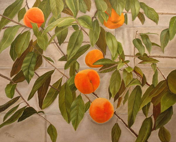 Painting - Peaches by Angeles M Pomata