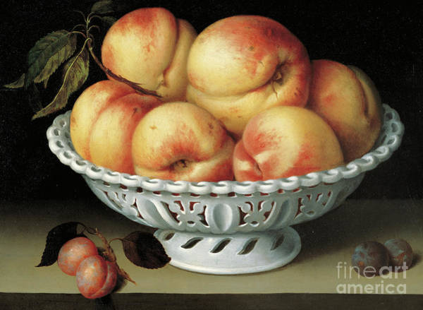 Wall Art - Painting - Peaches In A Pierced White Faience Basket  by Fede Galizia