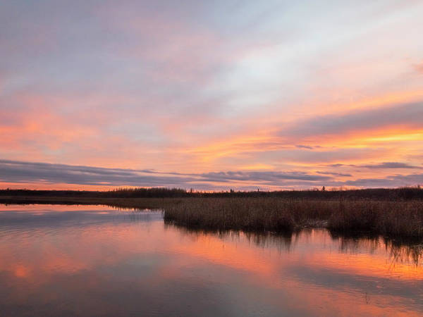 Photograph - Peachy Pink Sunset At Boy Lake #1 by Patti Deters