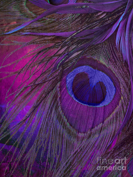 Bakery Painting - Peacock Candy Purple  by Mindy Sommers