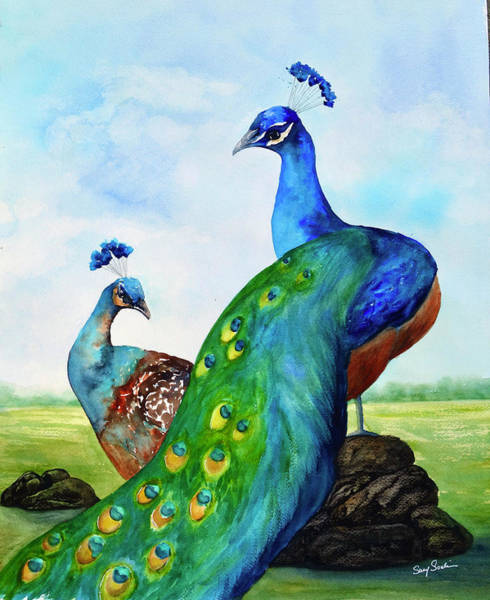 Wall Art - Painting - Peacock Country by Susy Soulies