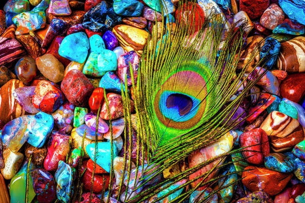 Wall Art - Photograph - Peacock Feather On Colorful Stones by Garry Gay