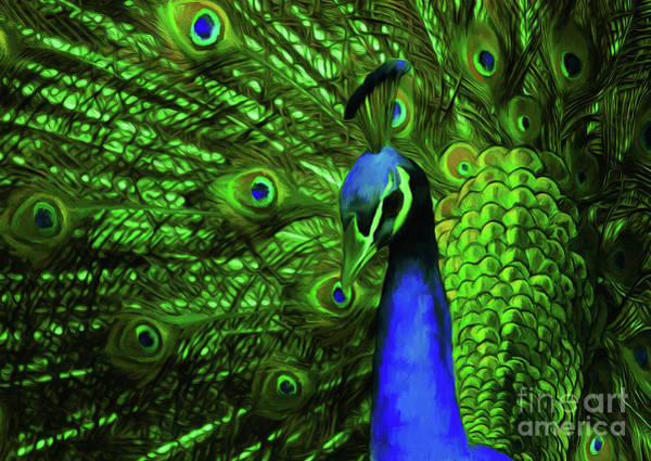 White Peacock Painting - Peacock In Green  by Gull G