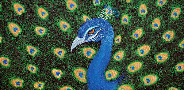 Wall Art - Painting - Peacock by Laura Barbosa
