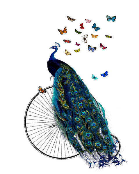 Regal Digital Art - Peacock On A Bicycle With Butterflies by Madame Memento