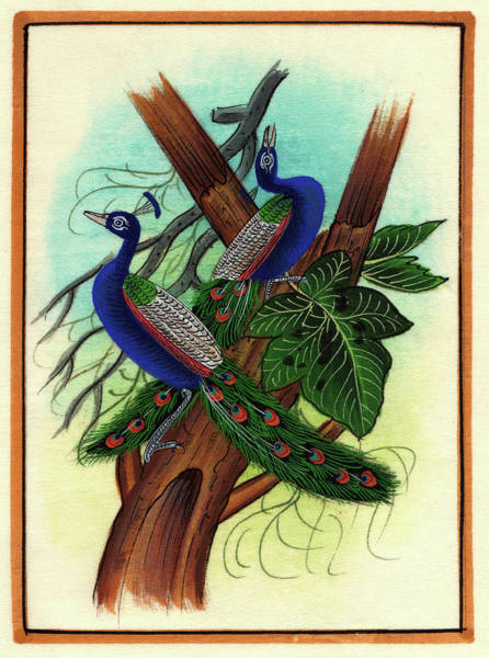 Wall Art - Painting - Peacock Painting Tree Forest Miniature Painting Artist Nature Paper Artwork India. by M B Sharma