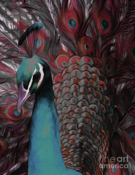 White Peacock Painting - Peacock Portrait  by Gull G