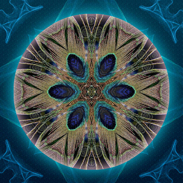 Mixed Media - Peacock Power by Alicia Kent