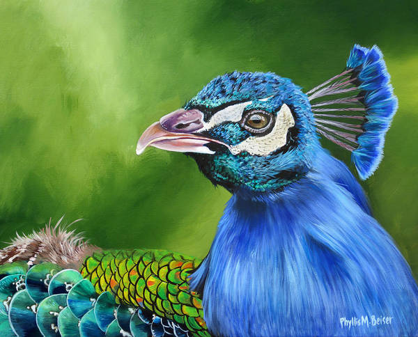 Wall Art - Painting - Peacock Profile by Phyllis Beiser