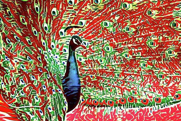 Photograph - Peacock Reds by Alice Gipson